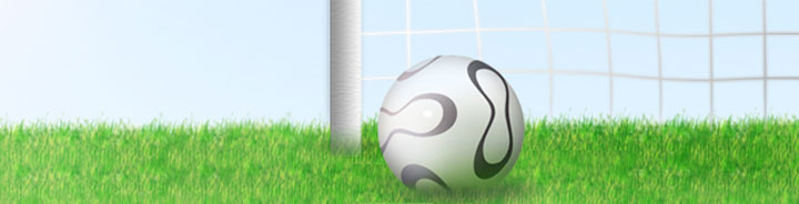 Sportex investments Ltd - Sports ball manufacturers, Printers and General office suppliers